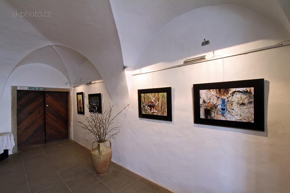 výstava Telč