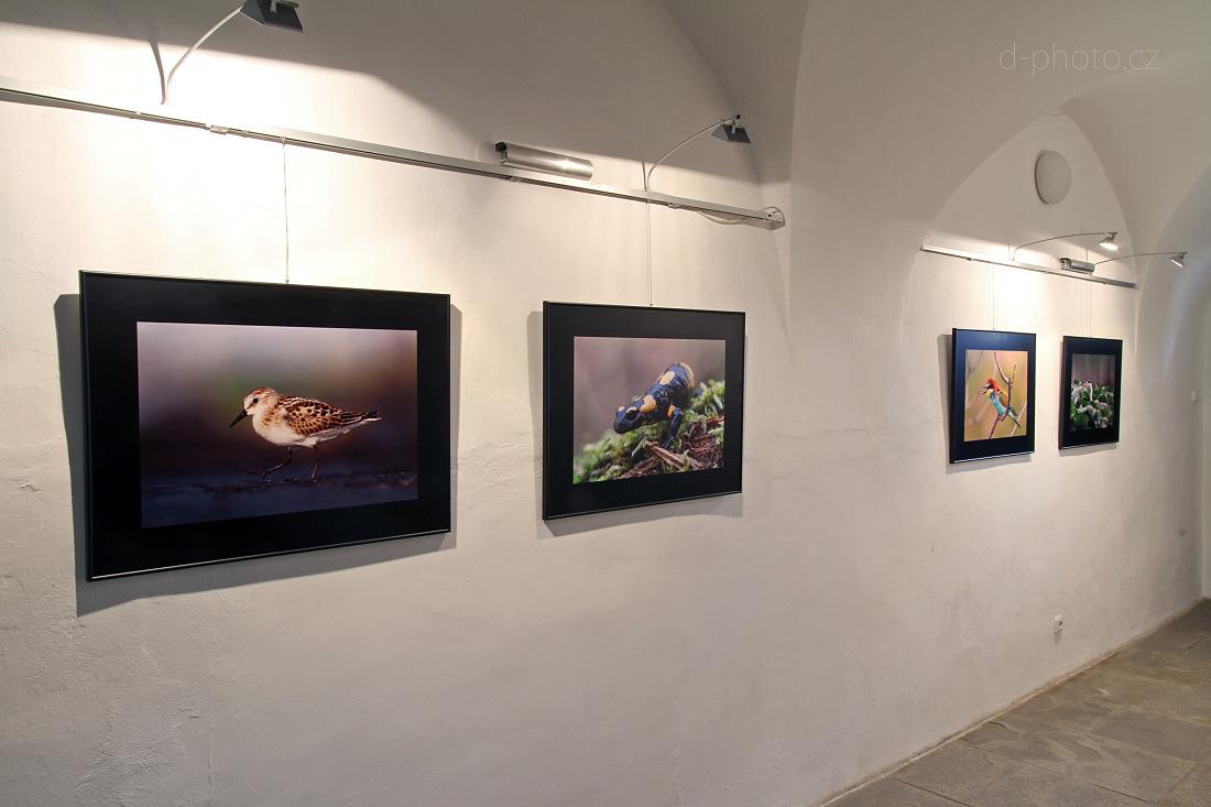 Výstava fotografií v Telči